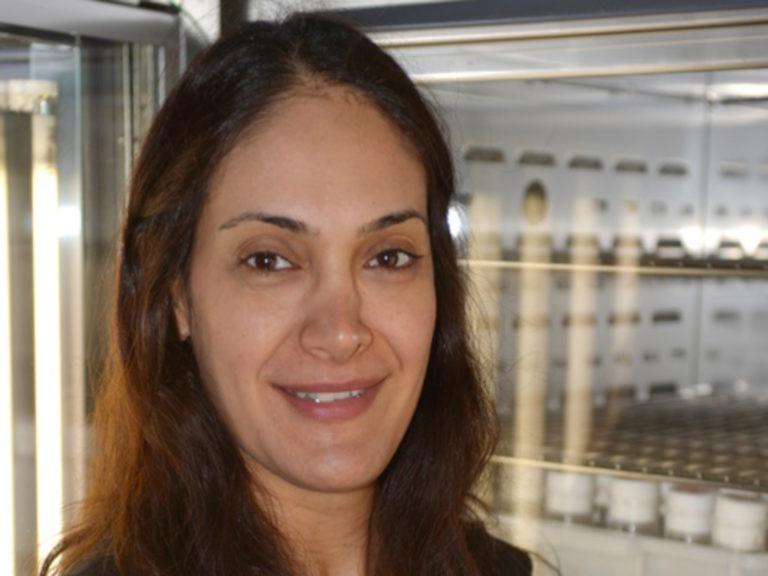 Neda Barghi
